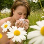 Alergicy – rekomendujemy domenę internetową dla Was